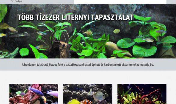 Akváriumfelújítás